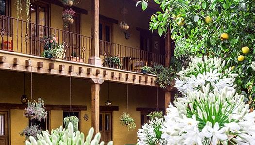 hotel posada patzcuaro jardin flores